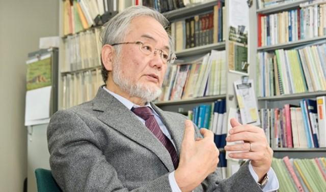 Методика голодания Есинори Осуми: польза аутофагии для организма